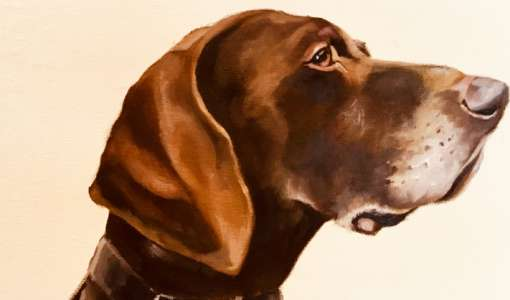 Painting holiday: How to paint animal portraits