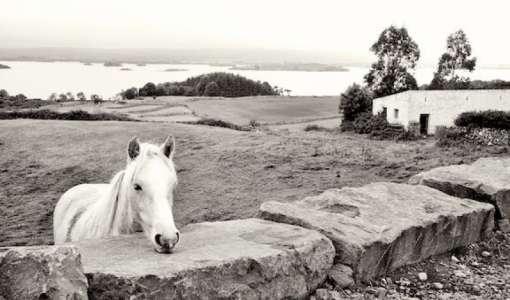 Northern Ireland Photo Tour
