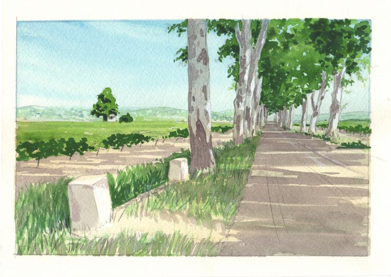 Watercolour painting in the south of France